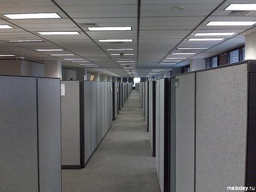 Кубиклы в офисе