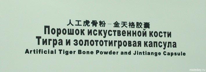Порошок искусственной кости
