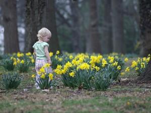 Ребёнок в лесу смотрит на цветы.